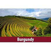 Burgundy (9)